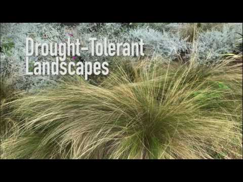 Smart Landcapes – Drought-Tolerant Landscapes