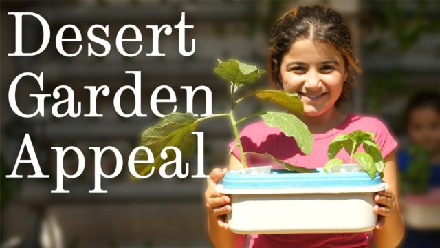 Desert Garden Appeal | The University of Sheffield