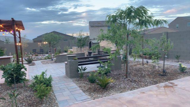 Arizona Sub Tropical Garden Q & A