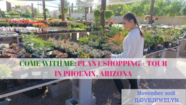 Come with me: Plant shopping + tour  | Phoenix, Arizona | November  2018 | ILOVEJEWELYN