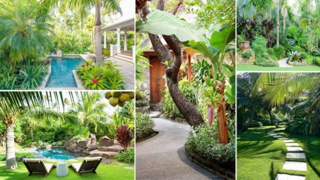100 Awesome Tropical Garden Ideas for Your Home | DIY Garden
