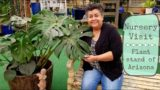 Shop With Me at The Plant Stand of Arizona | House plant shopping