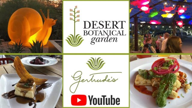 Desert Botanical Garden and Gertrude's