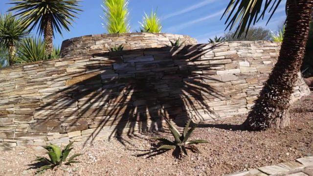 Desert Botanical Gardens….