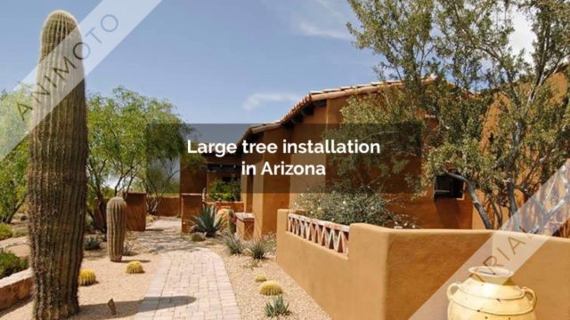 Landscape architecture design and build in Arizona