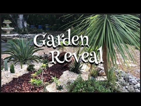 Tropical Garden Makeover Tour / South Florida Native Plants Succulents/ Landscape Designer Cacti
