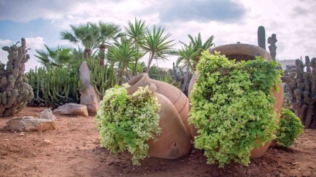 Desert Landscape Design Photos