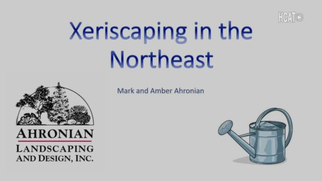 Xeriscaping In The Northeast