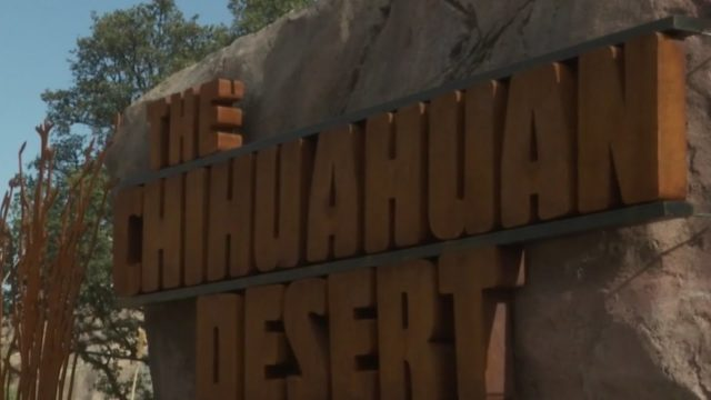 El Paso Zoo opens new Chihuahuan Desert exhibit