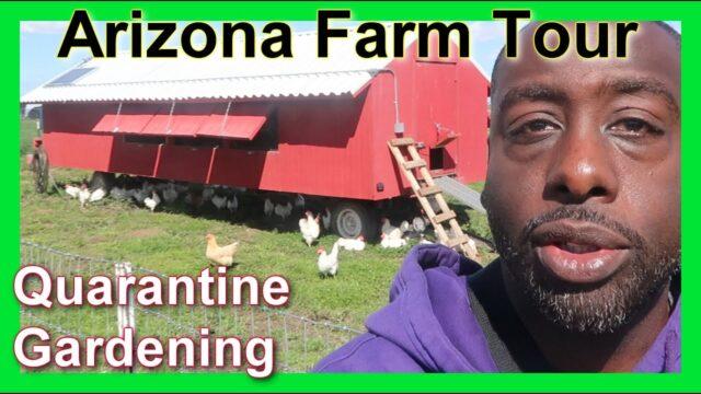 Phoenix AZ Farm And Garden Visit B4 Quarantine Vlog