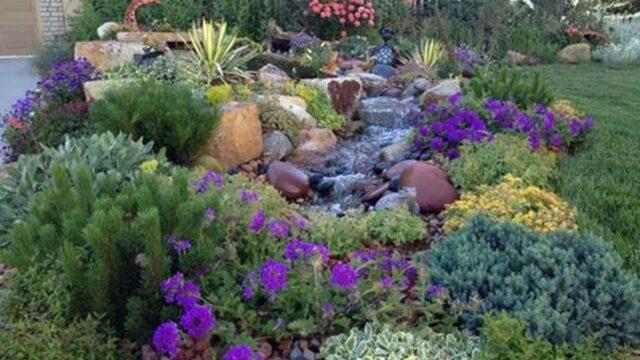 Xeriscape Landscape Design