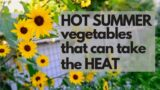 HOT SUMMER Garden Vegetables – which vegetables can take the HEAT of an Arizona summer?