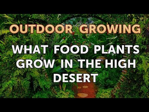 What Food Plants Grow in the High Desert