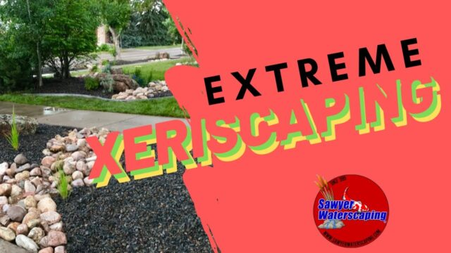 [XERISCAPING] Try this Front Yard Landscaping Idea!