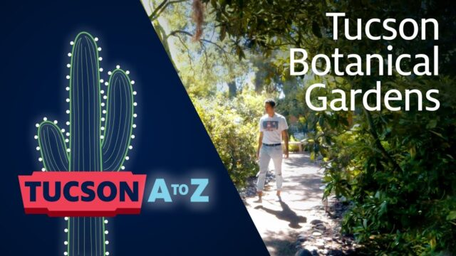 Explore the Tucson Botanical Gardens With Me | Tucson A to Z