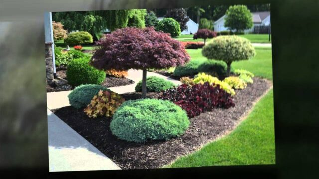 Las Vegas, NV Landscaping – Easy Landscaping Ideas
