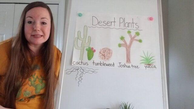 Desert Plants Chart