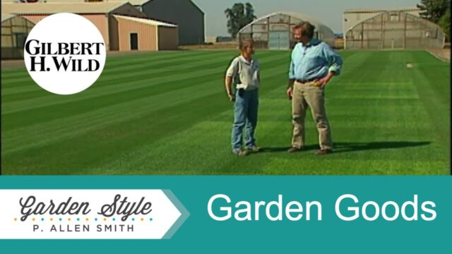 Garden Goods: Drought Tolerant Grass & Soy Bean Benefits | Garden Style (715)