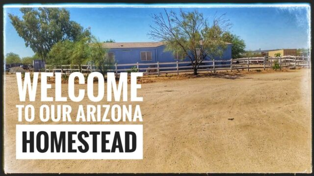 First Video – Starting our Homestead in the Southern Arizona desert.