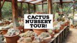 Bach's Cactus Nursery Tour! | Rare Cactus Tour