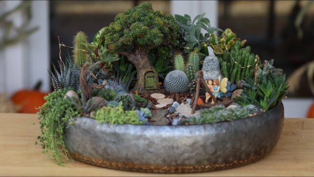 Succulent Treehouse Fairy Garden! 🌵🧚‍♀️// Garden Answer