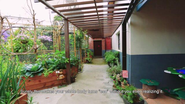 Phoenix Garden 2