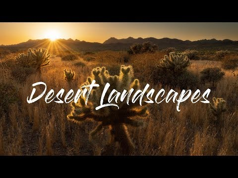 Landscape Photography | Desert Compositions