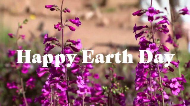 Celebrating Earth Day with Desert Botanical Garden