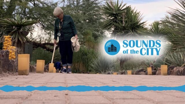 Sounds Of The City: Lighting Luminarias At Desert Botanical Garden In Phoenix