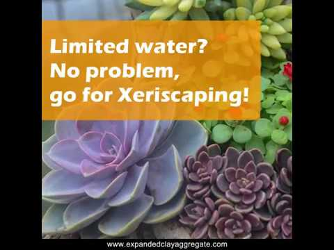 Limited water? No problem, go for Xeriscaping! 2019 Sustainable Landscaping ideas for India!