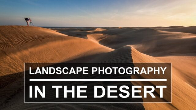 Landscape Photography in the Desert | Dunes of Maspalomas