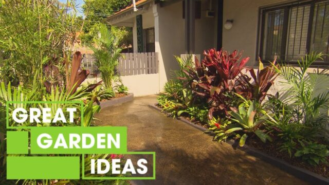How to Create a Tropical Garden | Gardening | Great Home Ideas
