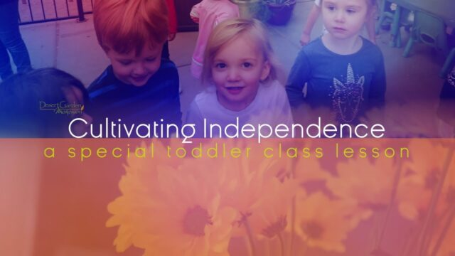 DGM Cultivating Independence  A Special Toddler Class Lesson