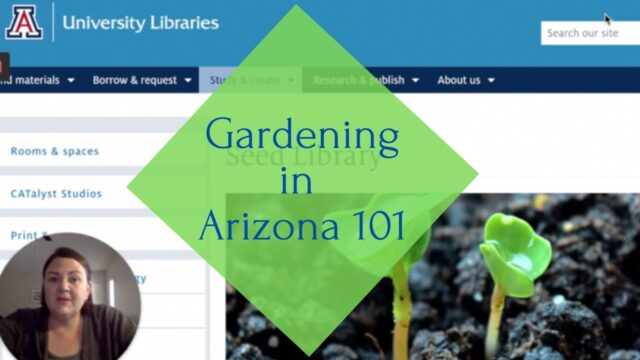 Gardening In Arizona 101  Desert Gardening Resources