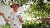 Introduction to Growing Vegetables at High Elevation in Northern Arizona