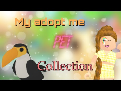 My pet collection in adopt me + getting toucan -Phoenix garden-