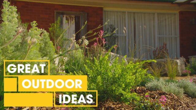 How to Create a Dry Native Australian Garden | Outdoor | Great Home Ideas
