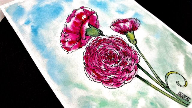 Carnations Beginner How to Draw and Watercolor Step by Step