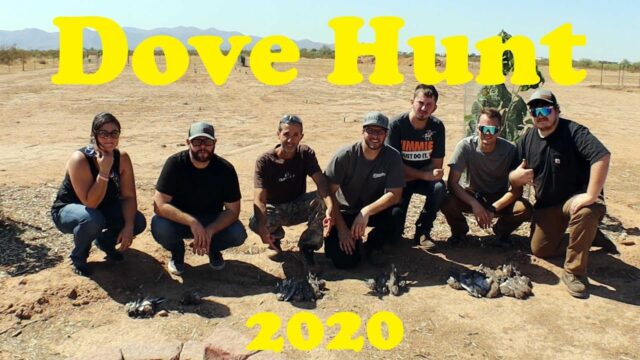 Desert Farm Vlog | Arizona Dove Hunt 2020