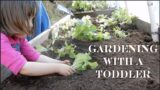 Gardening with a Toddler on the Homestead