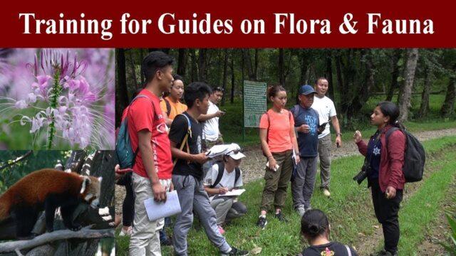 Training for Trekking Guides । यसरी दिइन्छ ट्रेकिङ् गाइडलाई तालिम ।