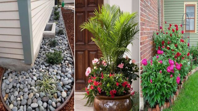20+ Minimalist And Small Front yard Landscaping Ideas | diy garden