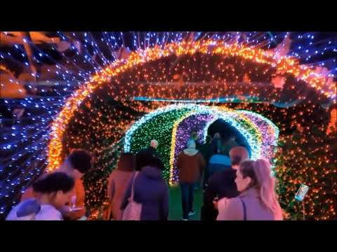 Garden Lights Holiday Nights 2017 – Atlanta Botanical Gardens