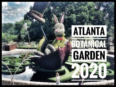 ATLANTA BOTANICAL GARDEN 2020#gardens#covid19