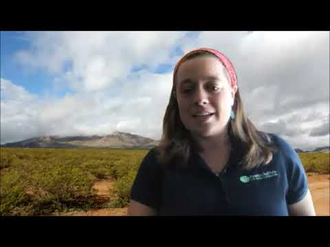 KCBN Kelly Chihuahuan Desert Nature Park 2020