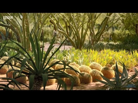 4 Desert style Gardens, Arizona & California, USA