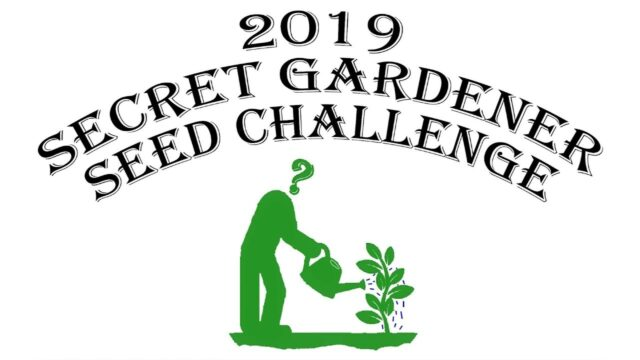 2019 Secret Gardener Seed Challenge… You Don't Want to Miss This!