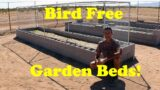 Protecting Garden Beds from Birds | Desert Gardening in AZ