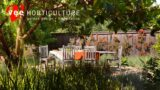 Landscape Design #41 | Landscape Design : Bay Area by Vee Horticulture | Berkeley, California