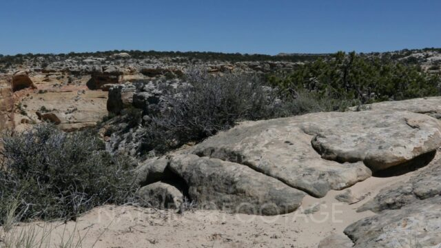 Utah desert landscape plants deep canyon valley slide. San Rafael Swell a large geologic feature …